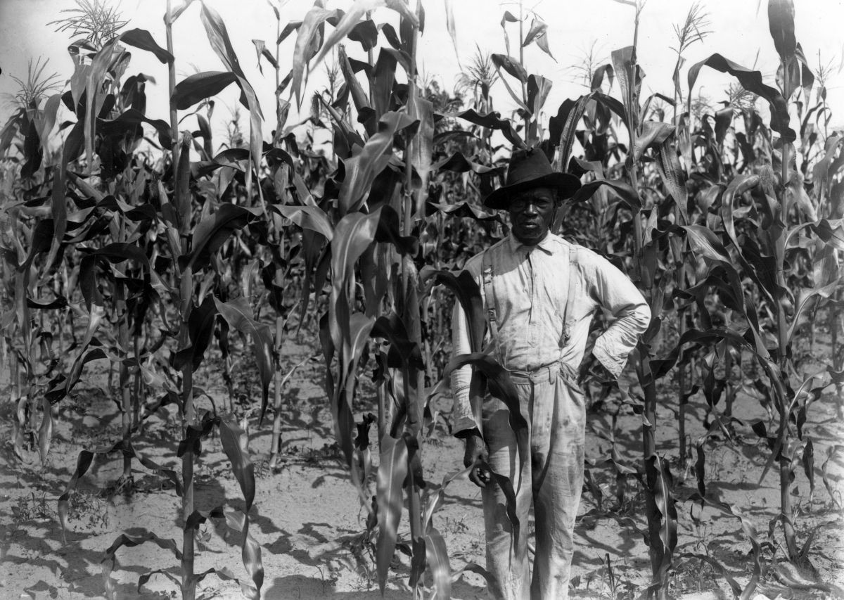 black-laborer-Levy-County