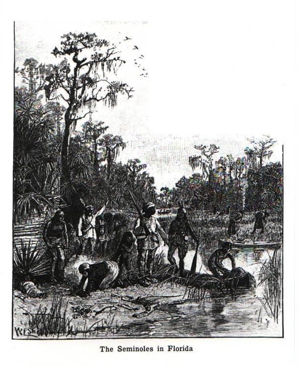 seminoles-florida